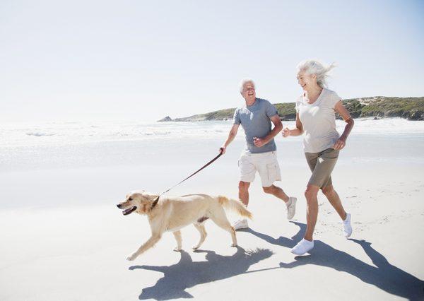 Benefícios dos Pets na Vida dos Idosos, envelhecer com qualidade